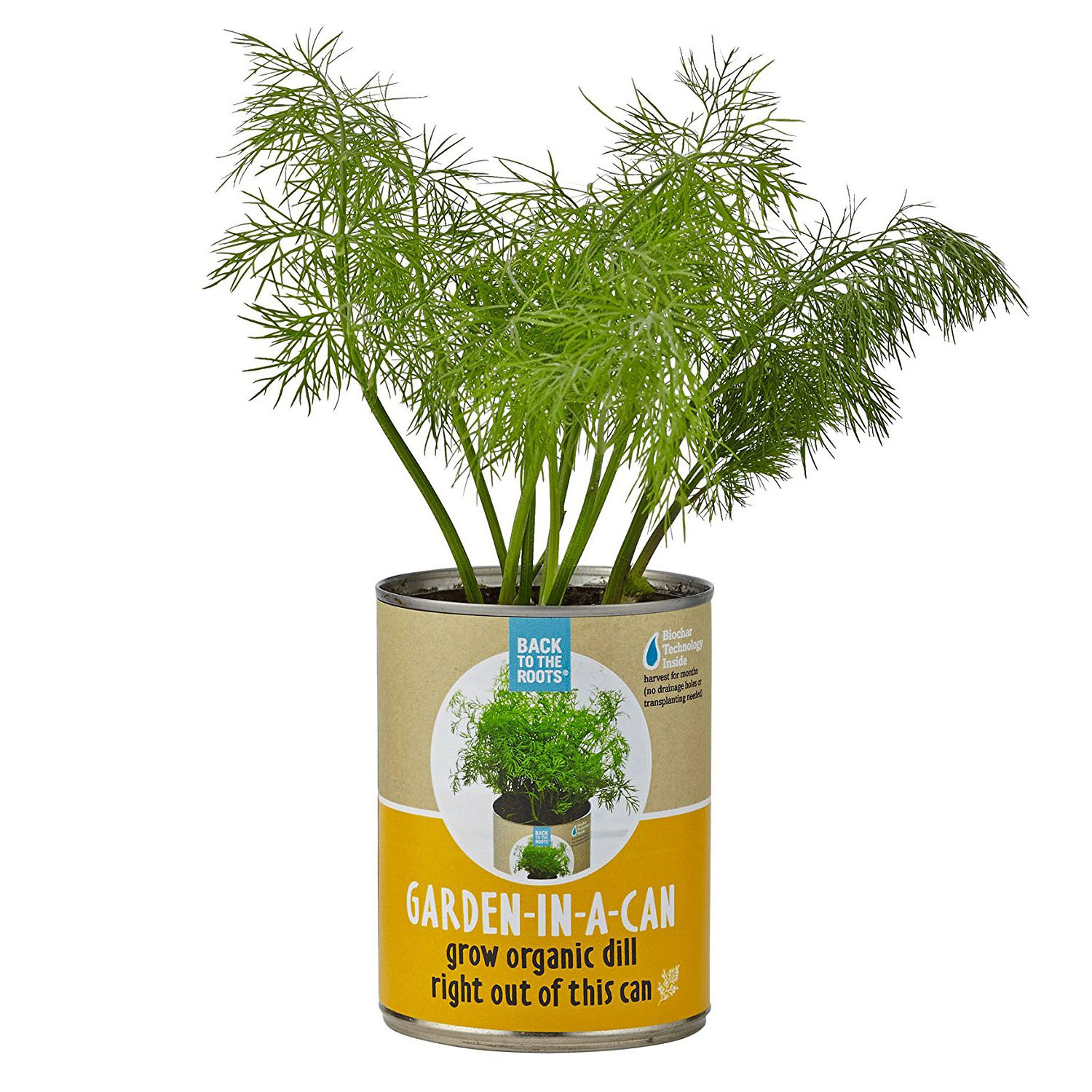 Back to the roots organic garden in a can with seeds and for Organic soil