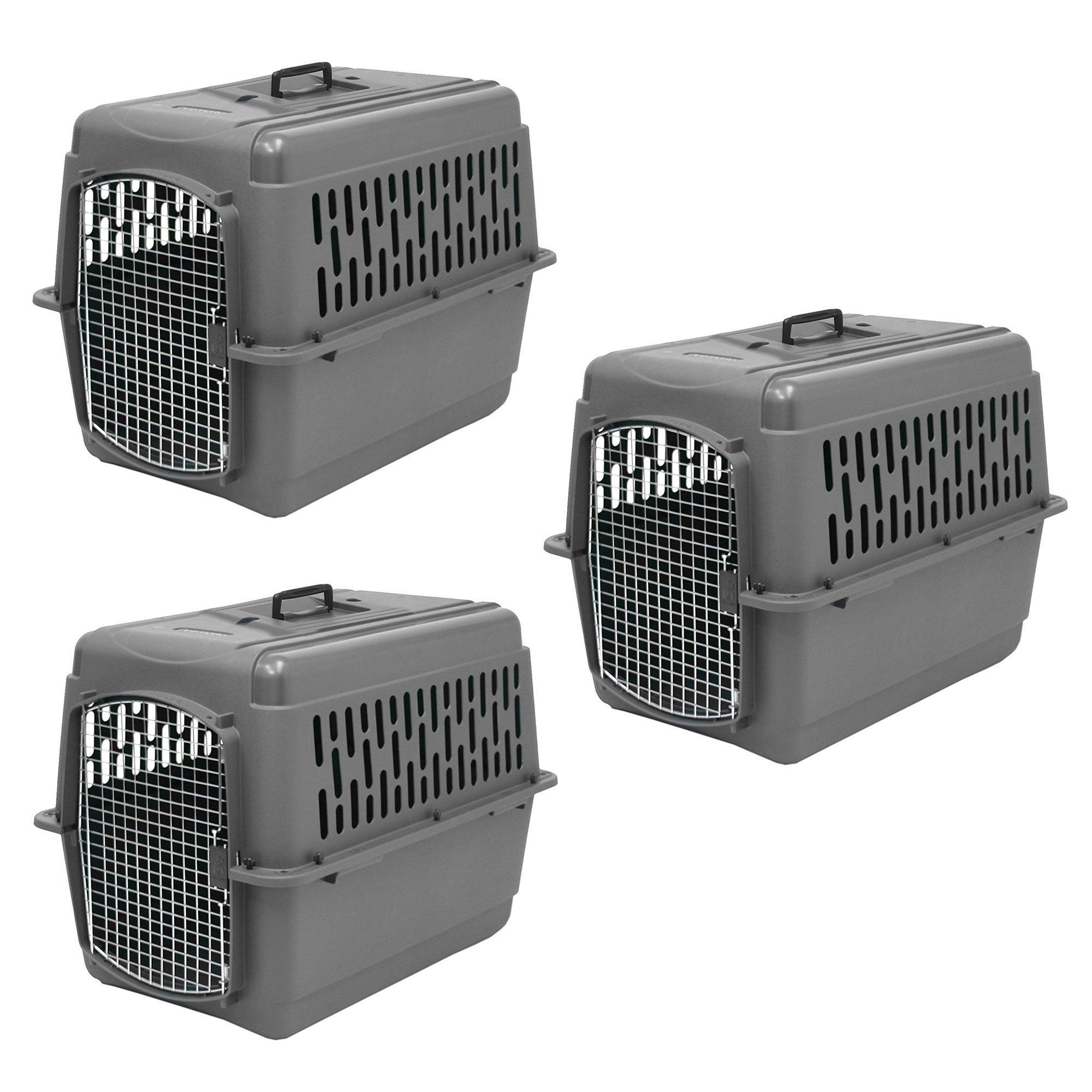 Aspen Pet Porter Plastic 28 Inch 25-30 Pound Pet Travel Carrier Kennel (3  Pack) 23fadc39b
