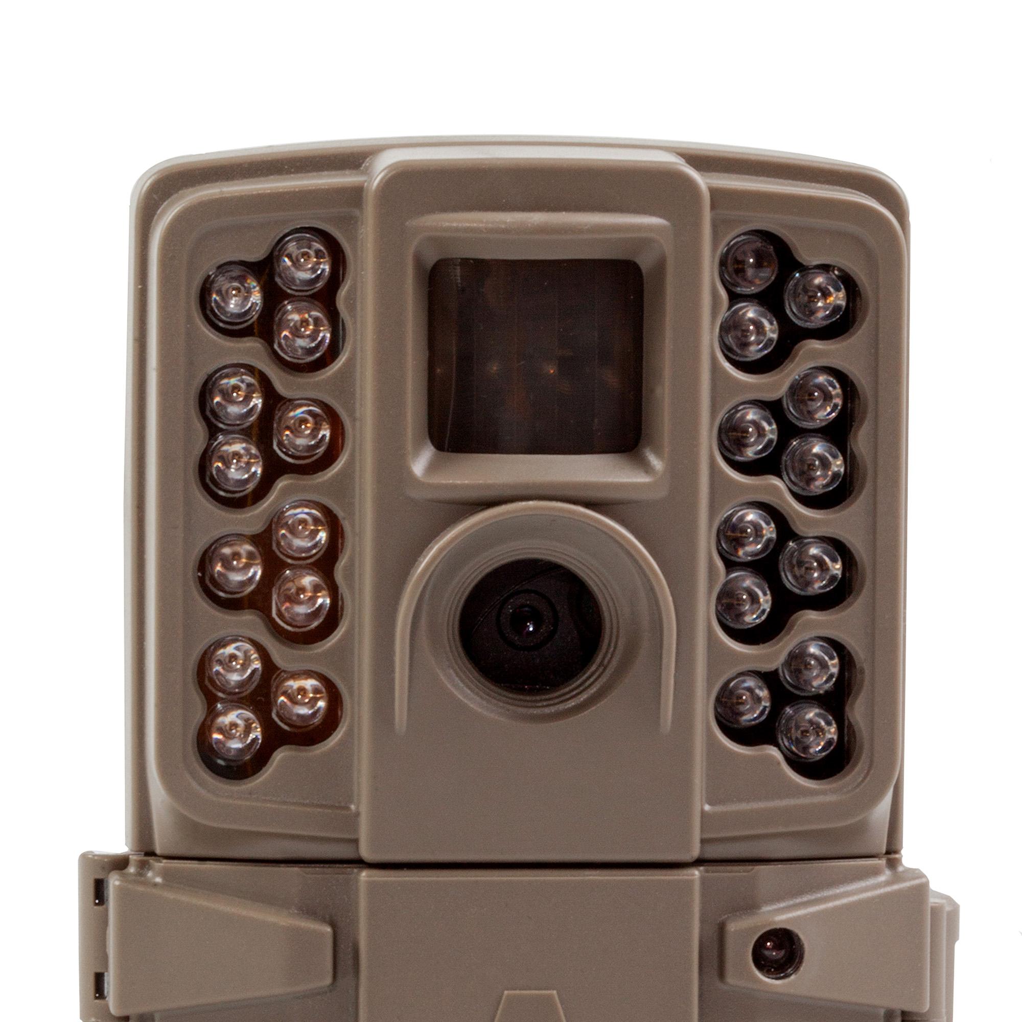 Can A Car Trigger A Trail Camera