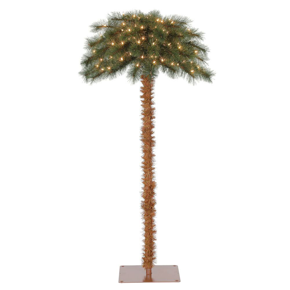 httpswwwvm imagesnetsysresourceashxguida - Christmas Palm Tree