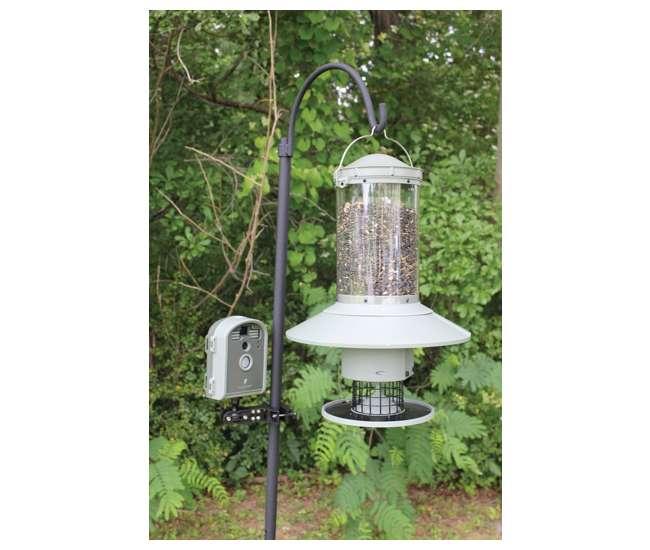 wingscapes birdcam pro digital backyard camera bird feeder wcb