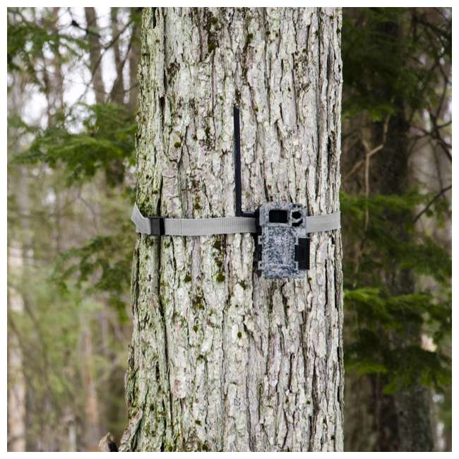 MICROUS + Box SPYPOINT LINK MICRO Nationwide Cellular Hunting Trail Game Camera & Security Box 9