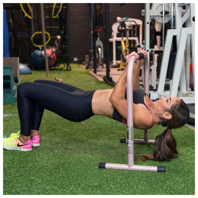 LFI-EQ-ROSEGOLD Lebert Fitness Natalie Jill Total Body Strengthener Steel Equalizers, Rose Gold 2
