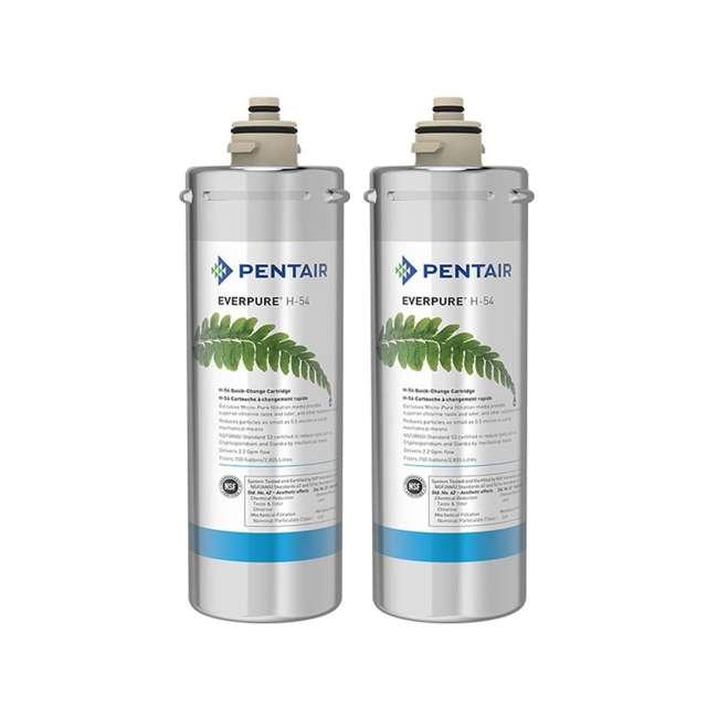 EV973006 Everpure H-54 Water Treatment Filter Cartridge (2 Pack)