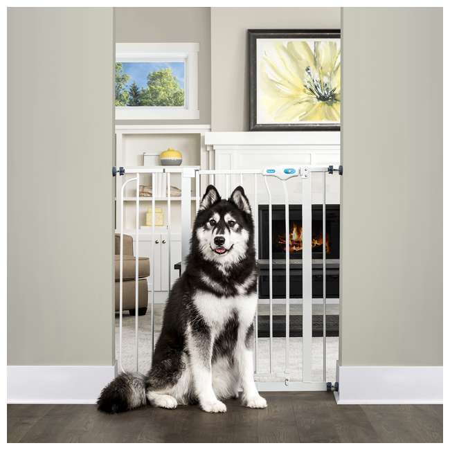 "3 x 0941 PW DS Carlson Pet Products 36"" Extra-Tall Pet Gate (3 Pack) 2"