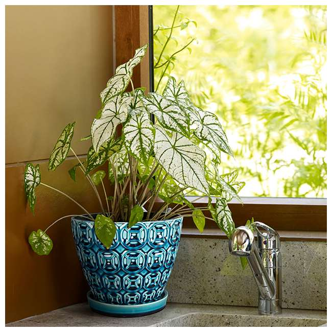 SPAT-CRM-047117 Southern Patio 12 Inch Ceramic Clay Mayer Flower Planter & Saucer Tray, Seafoam 4