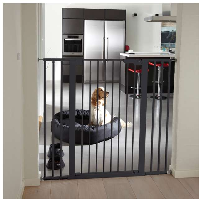 BBD-50916-2690 BabyDan 50916 Premier Extra Tall 31 Inch Pressure Mounted Pet Safety Gate, Black 2