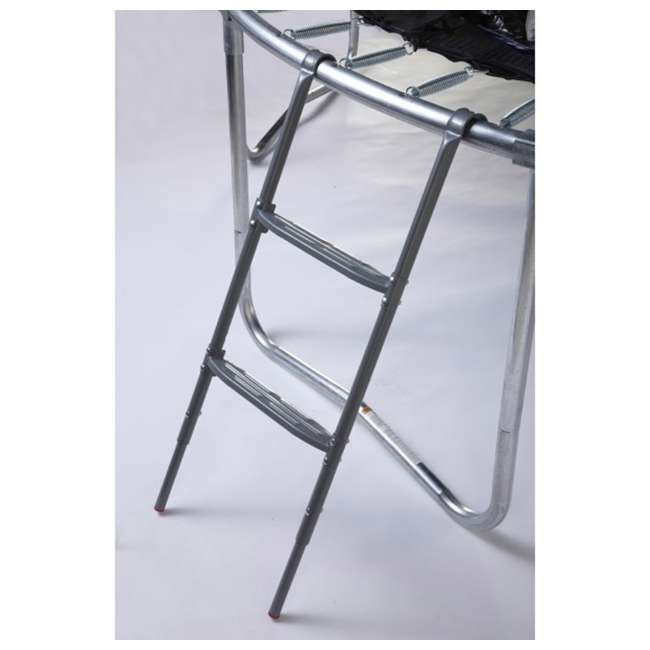 ACC-LADFS JumpKing Two Step Removable Trampoline Ladder with Flat Steps    ACC-LADFS 1