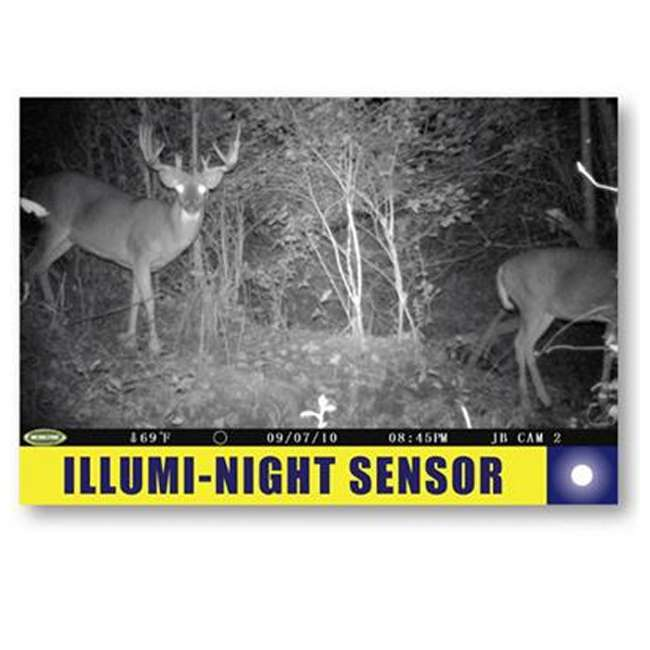 DGS-M80XD + 2 x MCA-12605 + 2 x SD2GB MOULTRIE M80XD Mini Infrared Digital Trail Cameras (2) + Security Boxes (2) + 2GB SD Cards (2)  4