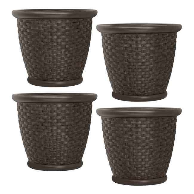 4 x P181605E34 Plant in Pot (4 Pack)