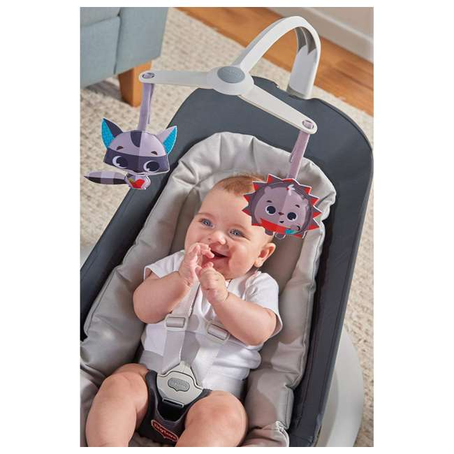 BN1060700 Tiny Love Meadow Days Collection Baby Infant Nature's Way Bounce and Sway, Gray 5