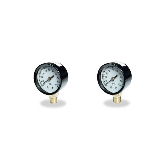 TC2104-P2 Flotec Brands2O TC2104 P2 Well Water Pump Pressure Gauge (2 Pack)