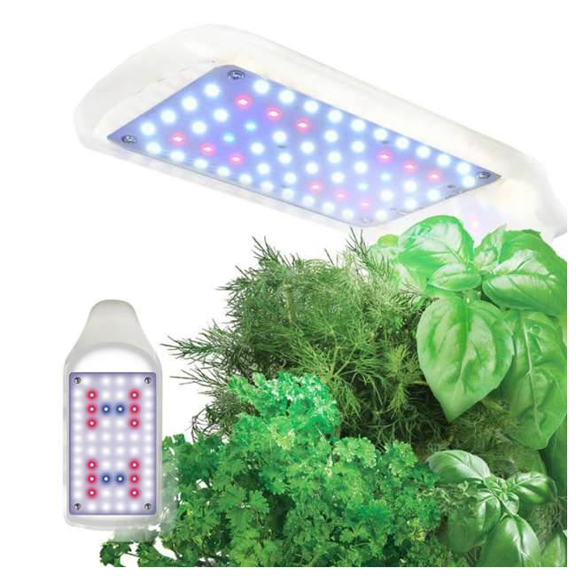 900818-1200 AeroGarden 900818-1200 Sprout LED with Gourmet Herb Seed Pod Kit, White 2