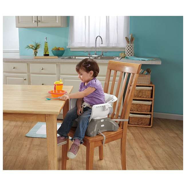 BMM98 Fisher Price SpaceSaver Portable Travel Baby Feeding High Chair Seat, Luminosity 7