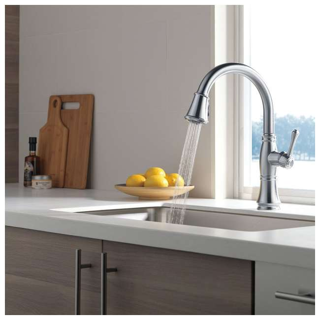 9197-AR-DST Delta Faucets Cassidy Single Handle Kitchen Faucet, Arctic Stainless 2