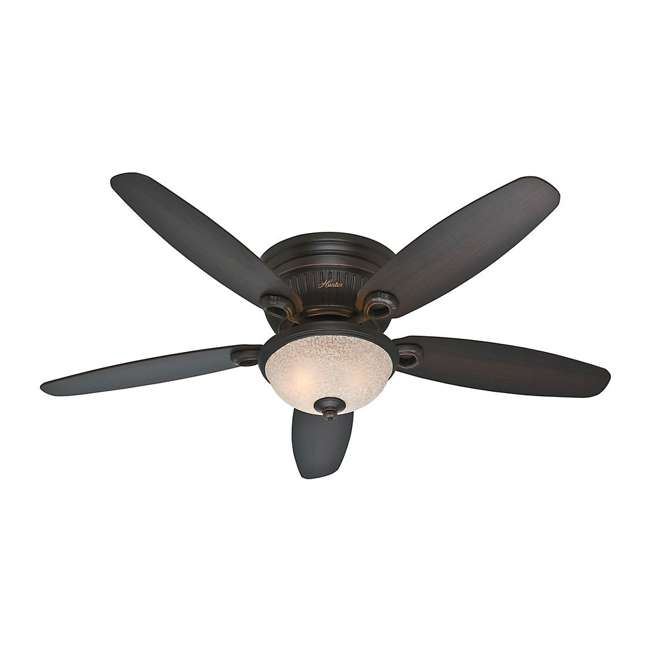 53253 Hunter Ashmont Low Profile 52 Inch Ceiling Fan w/ Light & Chain, Onyx Bengal